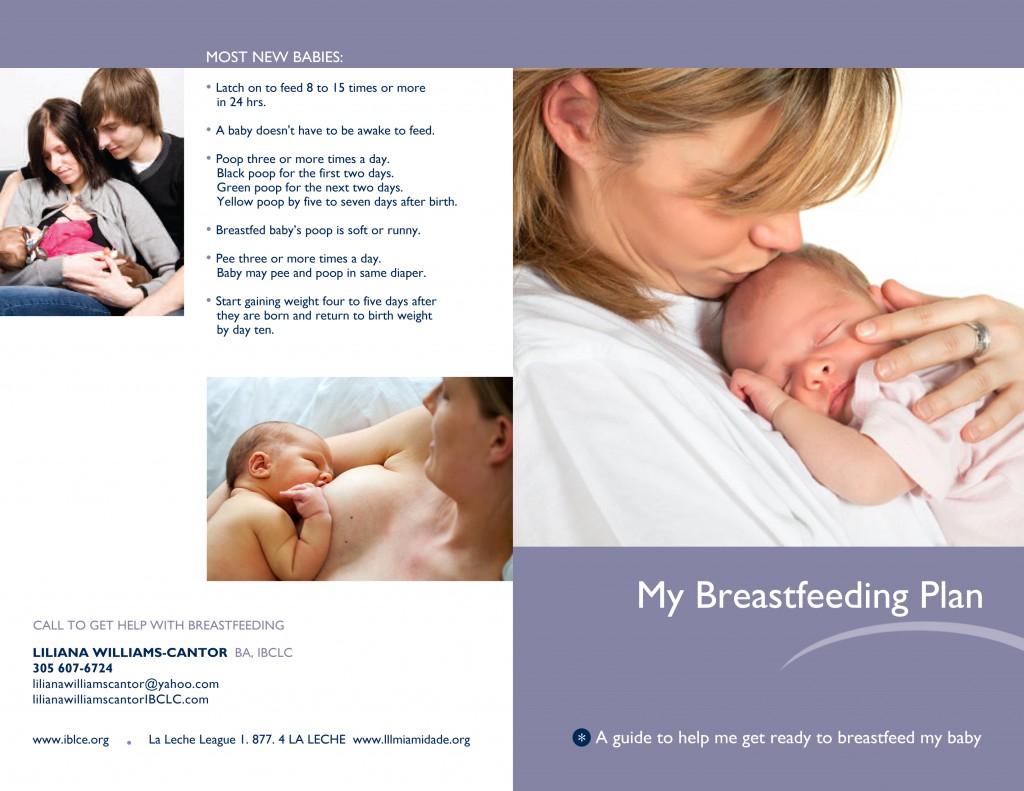 Breastfeeding Plan 1