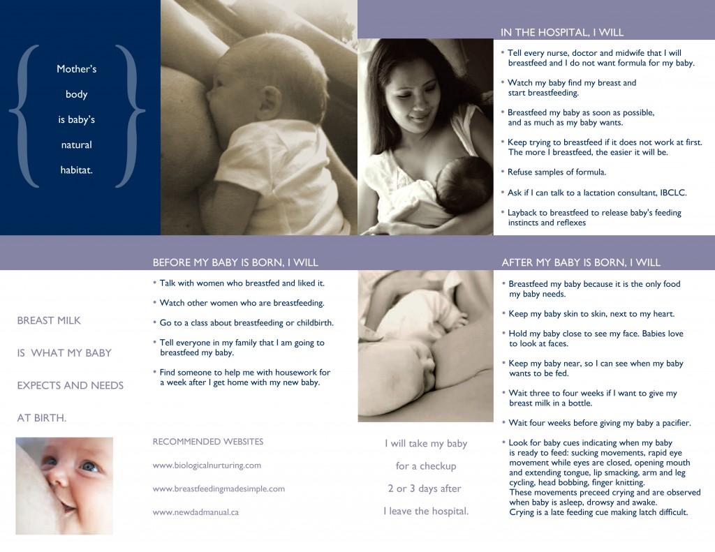 Breastfeeding Plan 2